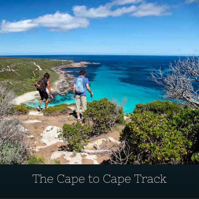 Cape To Cape Track Hiking Guide